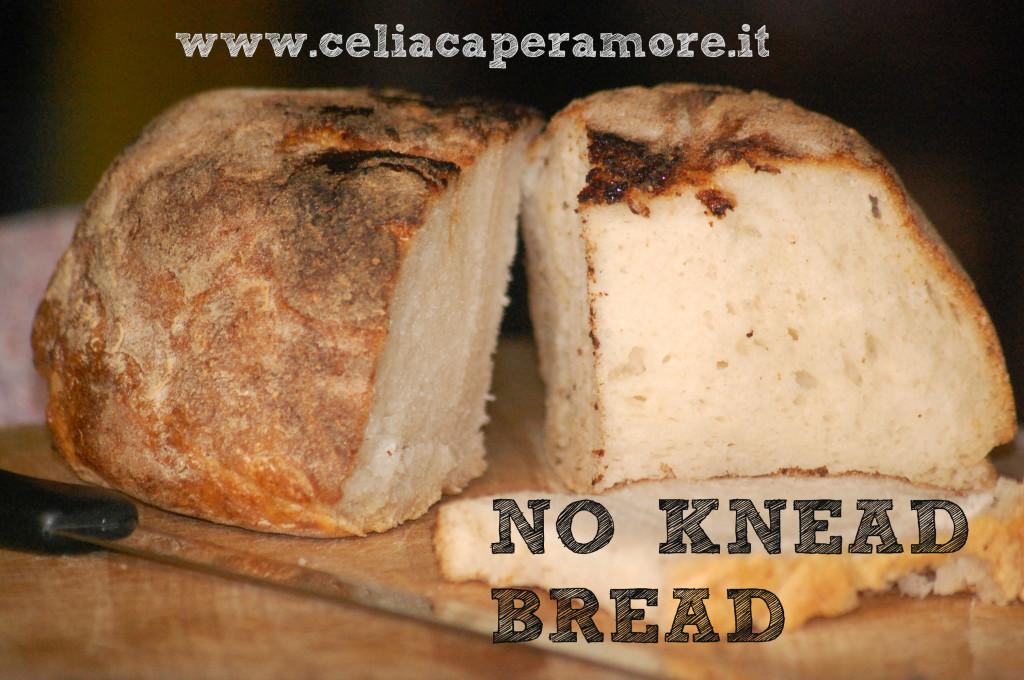 no knead